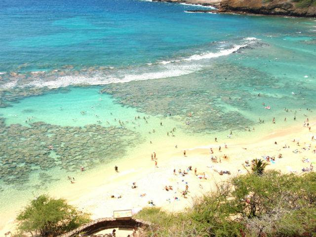 ハワイ ハナウマ湾