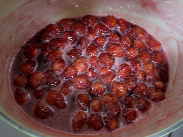 strawberry (8)
