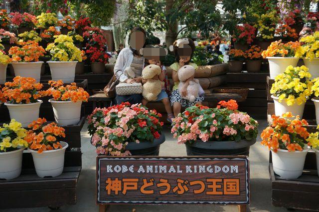 神戸どうぶつ王国で家族と一緒
