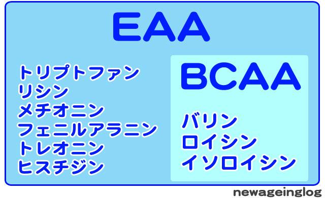 必須アミノ酸 EAAとBCAA